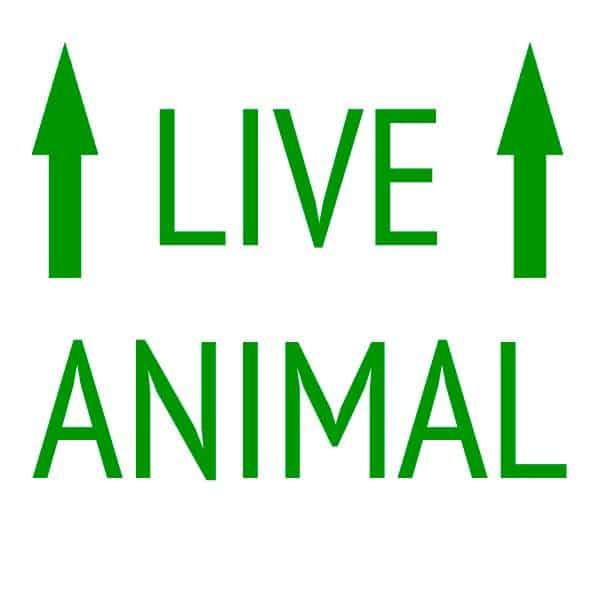 live_animal