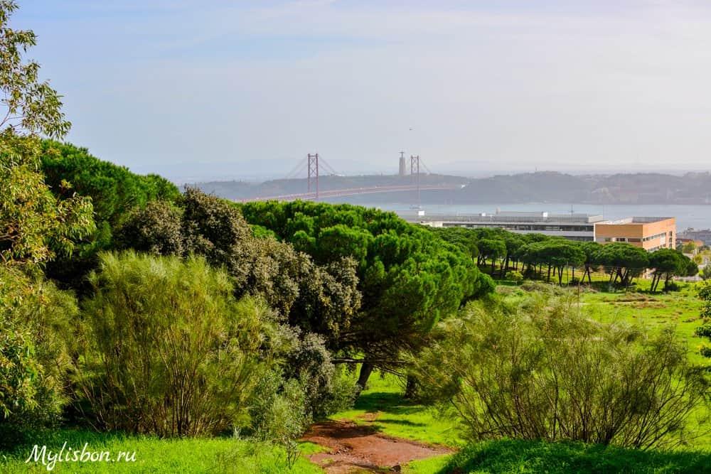 Монсанто в Лиссабоне