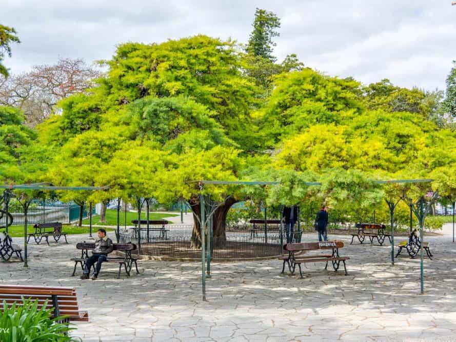 Парк Принцип Реал в Лиссабоне